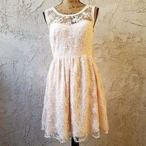 Blush strapless party dress w/lace overlay